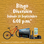 Bingo Diversión